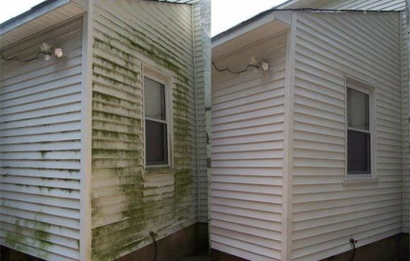 Mold Cleaning from Painted Wood – November 2020
