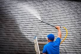 soft washing roof
