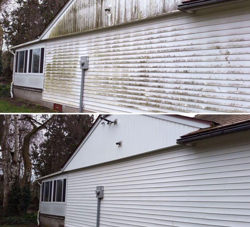Heavy Mold Removal – January 2021